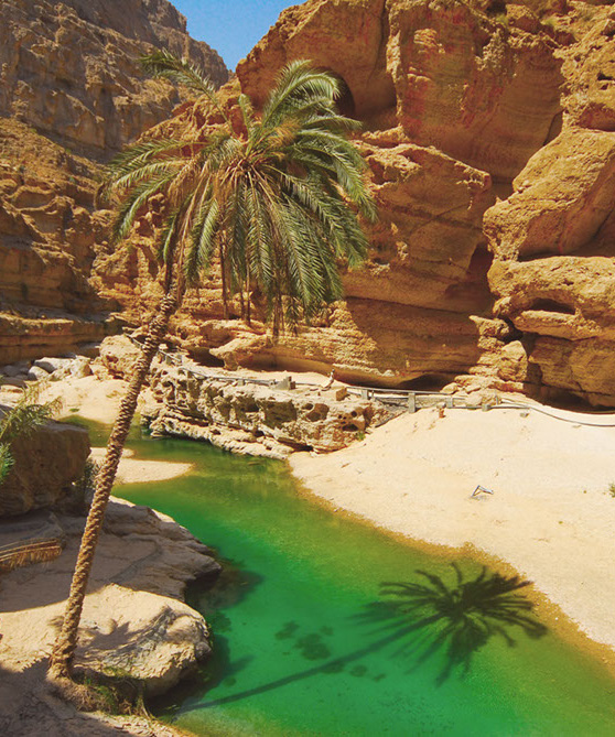 Wadi Shab pool